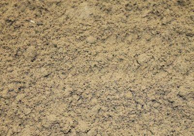 Der perfekte Bodengrund
